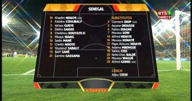 Afrique du Sud 0 - 2 Sénégal