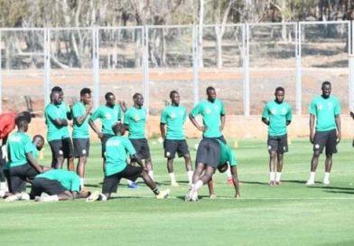 Aliou Cissé : La taniere est au complet depuis mardi !